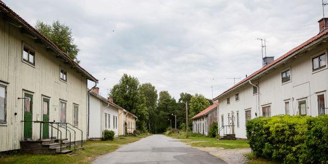 Emma-Sofia Olsson/SvD/TT / TT NYHETSBYRÅN