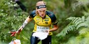 Tove Alexandersson tävlar under O-Ringen för sin klubb Stora Tuna OK. PETER HOLGERSSON / BILDBYRÅN