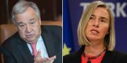 Guterres och Mogherini.  TT