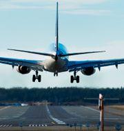 Ett flygplan landar på Arlanda. Lars Pehrson/SvD/TT / TT NYHETSBYRÅN