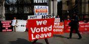 Demonstranter utanför parlamentet i London tidigare i veckan. HENRY NICHOLLS / TT NYHETSBYRÅN