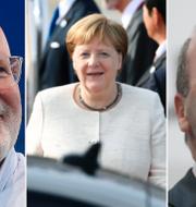 Frans Timmermans, Angela Merkel och Manfred Weber. Arkivbilder. TT