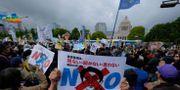 Protester KAZUHIRO NOGI / AFP
