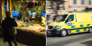 Kubakrokodil på Skansenakvariet/illustrationsbild föreställande ambulans. TT
