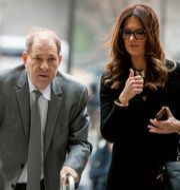 Harvey Weinstein och Donna Rotunno. Mary Altaffer / TT NYHETSBYRÅN