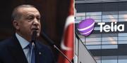 Turkiets president Erdogan. TT