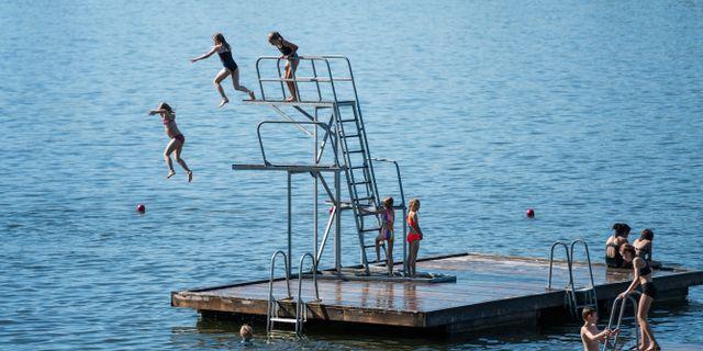 Barn hoppar från hopptorn vid Mälarhöjdsbadet i Stockholm. Stina Stjernkvist/TT / TT NYHETSBYRÅN