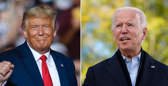 Donald Trump / Joe Biden TT