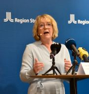 Irene Svenonius (M) Tove Eriksson/TT / TT NYHETSBYRÅN