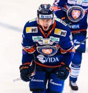 Växjös Emil Pettersson jublar efter 3-1.  JONAS LJUNGDAHL / BILDBYRÅN