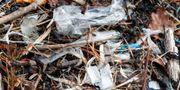 Plast på stranden. Arkivbild. Pedersen, Terje / TT NYHETSBYRÅN