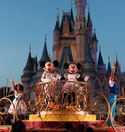 Disneyworld i Florida. John Raoux / TT NYHETSBYRÅN