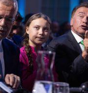 Alexander Van der Bellen, Greta Thunberg och Arnold Schwarzenegger. GEORG HOCHMUTH / APA