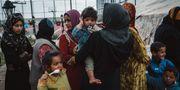 Civila i kläm mellan IS och irakiska styrkor i Mosul 2016. Alice Martins / TT / NTB Scanpix