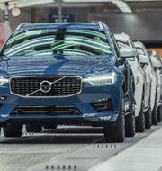 Pressbild. Volvos fabrik i Chengdu.  Pressbild.