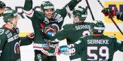 FrölundasSebastian Stålberg jublar efter sitt mål (3-2) under lördagens ishockeymatch i SHL mellan Frölunda HC och Luleå HF. Björn Larsson Rosvall/TT / TT NYHETSBYRÅN