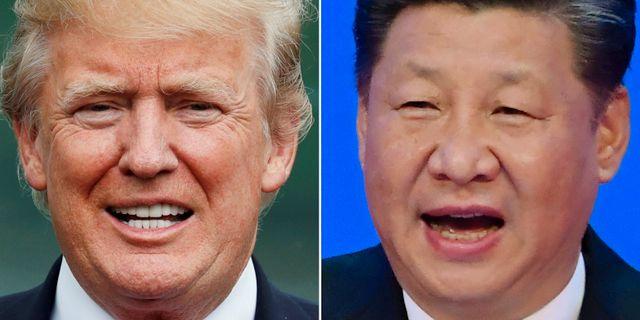 Donald Trump och Xi Jinping.  TT