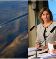 Arkivbilder: Fartyg i algblomning i Östersjön, Klimatminister Isabella Lövin (MP) och miljöminister Karolina Skog (MP) håller presskonferens om Miljömålsberedningen. TT