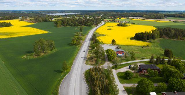Odlingslandskap i Mälardalen. Illustrationsbild. Fredrik Sandberg/TT / TT NYHETSBYRÅN
