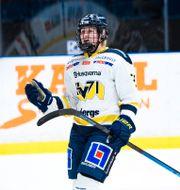 Jenny Antonsson. SIMON HASTEGÅRD / BILDBYRÅN