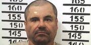 """Arkivbild: Joaquin """"El Chapo"""" Guzman efter det senaste gripandet i januari 2016. TT NYHETSBYRÅN"""