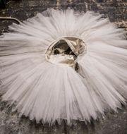 Kungliga Baletten har allvarliga problem med arbetsmiljön. Bezav Mahmod / SvD / TT / TT NYHETSBYRÅN