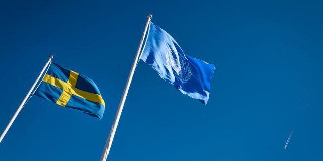 Svenska flaggan och FN-flaggan. Johan Nilsson/TT / TT NYHETSBYRÅN