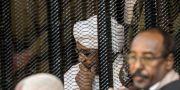Omar al-Bashir under rättegången efter att han avsatts. TT NYHETSBYRÅN