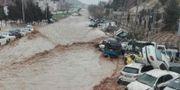 Översvämningar i Shiraz. HANDOUT / TT NYHETSBYRÅN