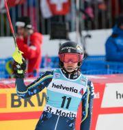 Anna Swenn Larsson. THOMAS BACHUN / BILDBYRÅN