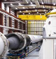 Arkivbild: Kapseln Dragon intill raketen Falcon 9 – båda från Space X.  SpaceX / TT NYHETSBYRÅN