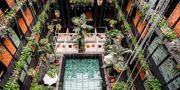 Nordens skönaste poolområde ligger på den nyöppnade hotellet Manon les Suites i Köpenhamn. Manon les Suites