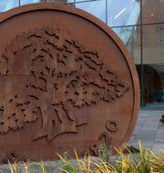 Swedbank, arkivbild. Janerik Henriksson/TT / TT NYHETSBYRÅN