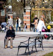 Människor håller avstånden vid trädgårdsföreningen i Göteborg den 25 april. TT NEWS AGENCY / TT NYHETSBYRÅN