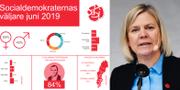 Finansminister Magdalena Andersson / Novus sammanställning över S-väljarna TT /Novus