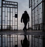 Bild från 2019. Man vid grinden till koncentrationslägret Sachsenhausen i Tyskland. Markus Schreiber / TT NYHETSBYRÅN