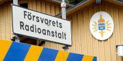 Arkivbild.  Gunnar Lundmark / SvD / SCANPIX / TT NYHETSBYRÅN