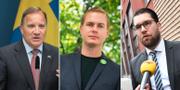 Stefan Löfven, Gustav Fridolin och Jimmie Åkesson  TT