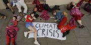 En klimatprotest i Storbritannien . TT