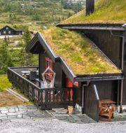 Illustrationsbild på en annan hytte.  Halvard Alvik / TT NYHETSBYRÅN