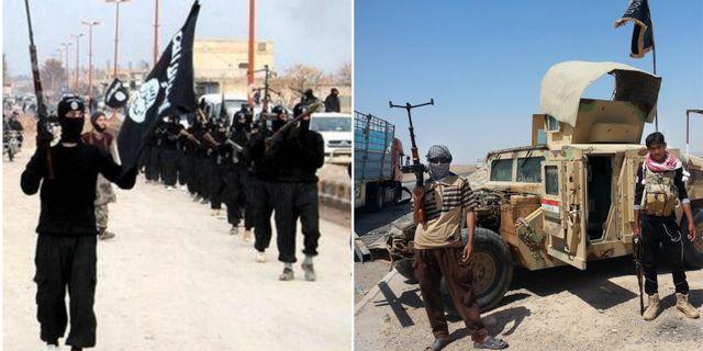 Al qaida vi lag bakom attacken