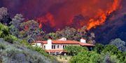 Illustrationsbild. Skogsbrand i Santa Barbara, Kalifornien 2009. Keith D. Cullom / TT NYHETSBYRÅN