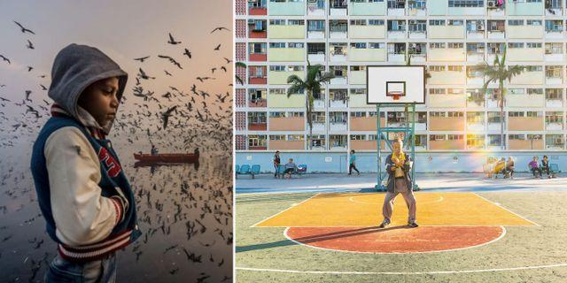 """Två av bilderna som prisas är """"Stämning"""", tagen i indiska Delhi och """"Daglig rutin"""", som porträtterar en tai chi-utövare i Hongkong. Navin Vatsa/Yoshiki Fujiwara/2019 National Geographic Travel Photo Contest"""