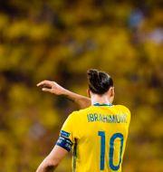 Zlatan Ibrahimovic under sin tid i landslaget. JOHANNA LUNDBERG / BILDBYRÅN