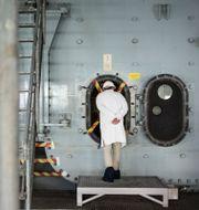 Barsebäcks kärnkraftverk vars sista reaktor stängdes av 2005. Arkivbild. Anders Ahlgren/SvD/TT / TT NYHETSBYRÅN