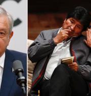 Andres Manuel Lopez Obrador, Evo Morales TT