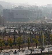 Wuhan Institute of Virology. Ng Han Guan / TT NYHETSBYRÅN
