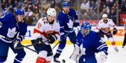 Denis Malgin i Florida Panthers utmanar Frederik Andersen i Toronto Maple Leafs i första perioden. Frank Gunn / TT NYHETSBYRÅN