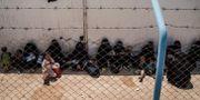 Kvinnor och barn som väntar på bussar för att lämna det överfulla al-Hol-lägret för IS-anhängares familjer i Syrien/arkiv.  Baderkhan Ahmad / TT NYHETSBYRÅN