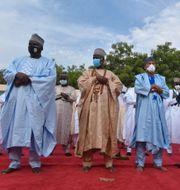 Muslimer i Nigeria ber under förra veckans id al-fitr. AP Photo / TT NYHETSBYRÅN